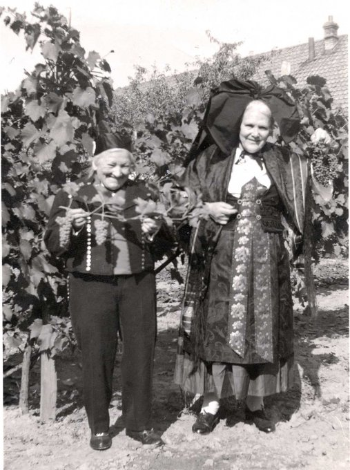 24 - Les vendanges en tenue d'alsacienne
